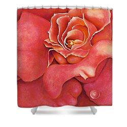 Pink Blush Shower Curtain