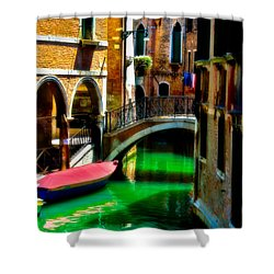 Pink Boat And Canal Shower Curtain
