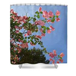 Pink Bougainvillea Shower Curtain