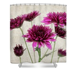 Pink Bouquet Shower Curtain by Judy Vincent