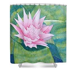 Pink Bromiliad Shower Curtain