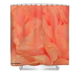 Pink Carnations Shower Curtain