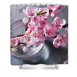 Pink Cherry Blossom Shower Curtain by Anastasy Yarmolovich