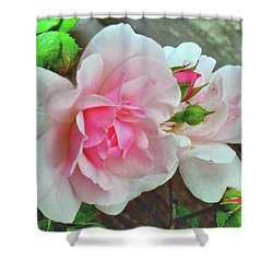 Shower Curtain featuring the photograph Pink Cluster Of Roses by Janette Boyd