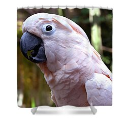 Pink Cockatoo Shower Curtain