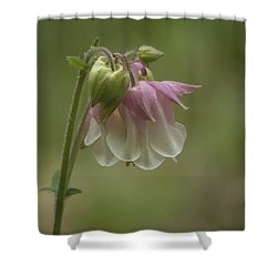 Pink Columbine 2015 Shower Curtain