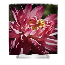 Pink Columbine Shower Curtain by Teresa Mucha