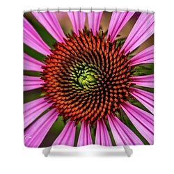 Shower Curtain featuring the photograph Pink Cornflower by Joann Copeland-Paul