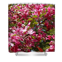 Pink Crab Apple Blossoms Shower Curtain