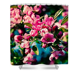 Shower Curtain featuring the photograph Pink Crab Apple Flowers by Alexander Senin