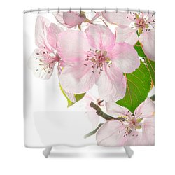 Pink Crabapple Blissoms Shower Curtain
