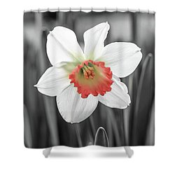 Pink Cup Pop Shower Curtain