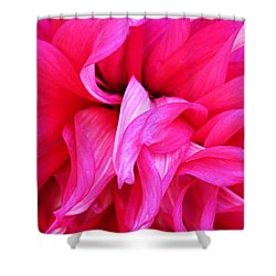 Shower Curtain featuring the photograph Pink Dahlia by Kristin Elmquist