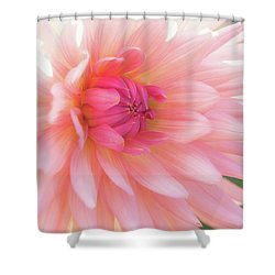 Pink Delight Shower Curtain by Kim Andelkovic