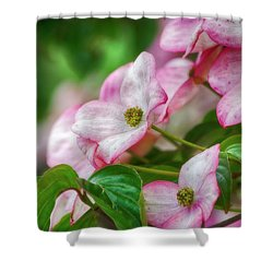 Shower Curtain featuring the photograph Pink Dogwood by Bonnie Bruno