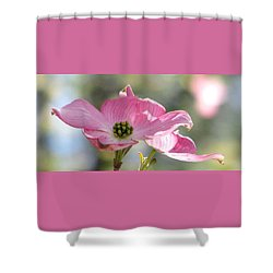 April Waltz Shower Curtain
