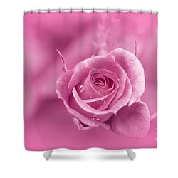 Pink Dream Shower Curtain by Charuhas Images