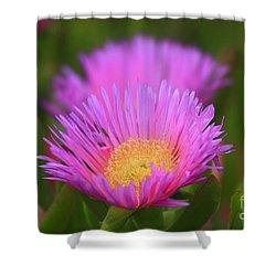Pink Dream Shower Curtain