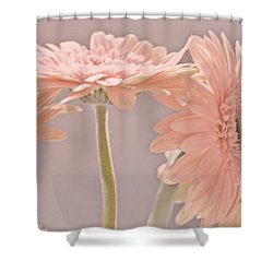 Pink Dreams Shower Curtain