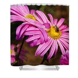 Pink Embrace Shower Curtain by Linda Shafer