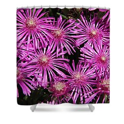 Shower Curtain featuring the photograph Pink Firework by Yumi Johnson