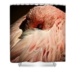 Pink Flamingo I'll Be Watching You Shower Curtain
