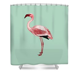 Pink Flamingo Isolated Shower Curtain