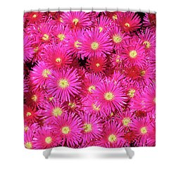 Pink Flower Explosion Shower Curtain by Mark Barclay
