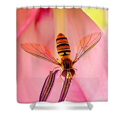 Pink Flower Fly Shower Curtain
