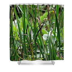 Pink Flower In The Grass Shower Curtain