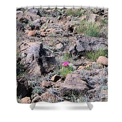 Pink Flower On Cactus Shower Curtain by Debbie Wells