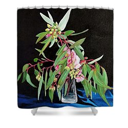 Pink Flowering Gum Shower Curtain