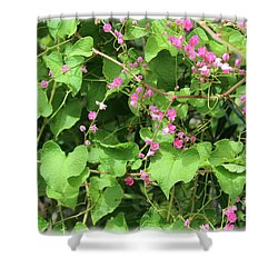 Shower Curtain featuring the photograph Pink Flowering Vine1 by Megan Dirsa-DuBois