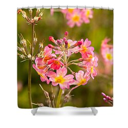 Pink Flowers In Scotland Shower Curtain