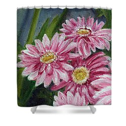Pink Gerbera Daisies Shower Curtain by Helen Eaton