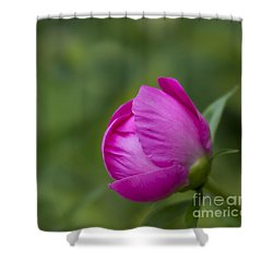 Shower Curtain featuring the photograph Pink Globe by Andrea Silies
