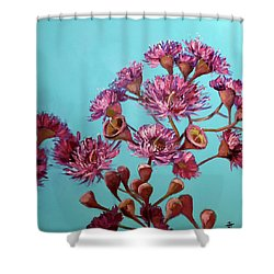 Pink Gum Blossoms Shower Curtain