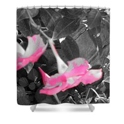 Shower Curtain featuring the photograph Pink Hats  by Cathy Dee Janes
