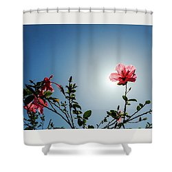 Pink Hibiscus Flowers Shower Curtain