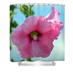 Pink Holyhock. Shower Curtain