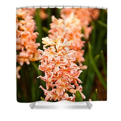 Shower Curtain featuring the photograph Pink Hyacinth by Erin Kohlenberg