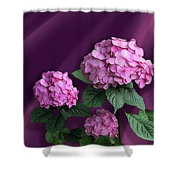 Pink Hydrangea Shower Curtain by Judy Johnson