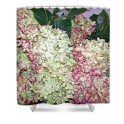 Shower Curtain featuring the digital art Pink Hydrangeas by Barbara S Nickerson