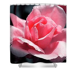 Pink In Light And Shadow Shower Curtain