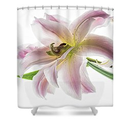 Pink Joy Shower Curtain