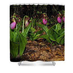 Pink Ladies Slipper Patch Shower Curtain