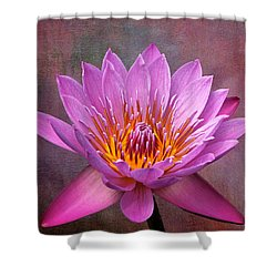 Pink Lady Shower Curtain by Judy Vincent