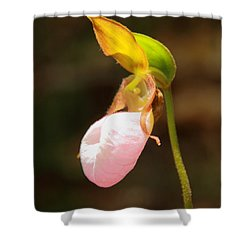Pink Lady Slipper Shower Curtain by Roupen  Baker