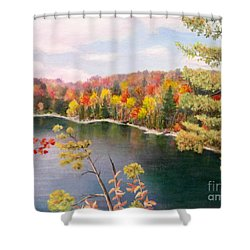 Pink Lake Qc Shower Curtain