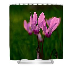 Pink Light Shower Curtain